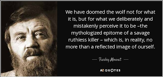 """We have doomed the wolf not for what it is, but for what we deliberately and mistakenly perceive it..."" - Farley Mowat Quotes at A-Z Quotes"