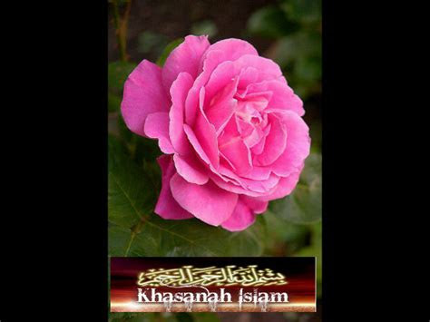kata mutiara islam menyentuh kalbu