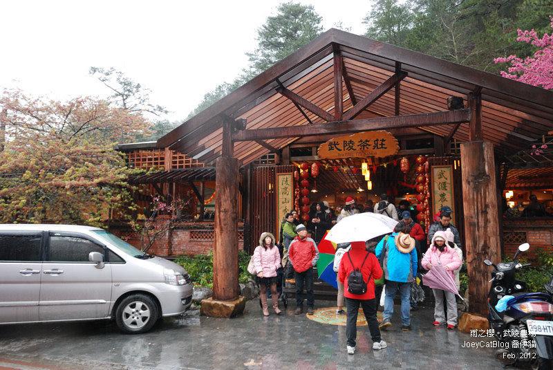 2012_0227_雨之櫻。武陵農場DSC_4285_06
