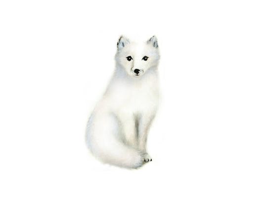 Arctic Fox Baby Animal Painting Gender Neutral by studioQgallery
