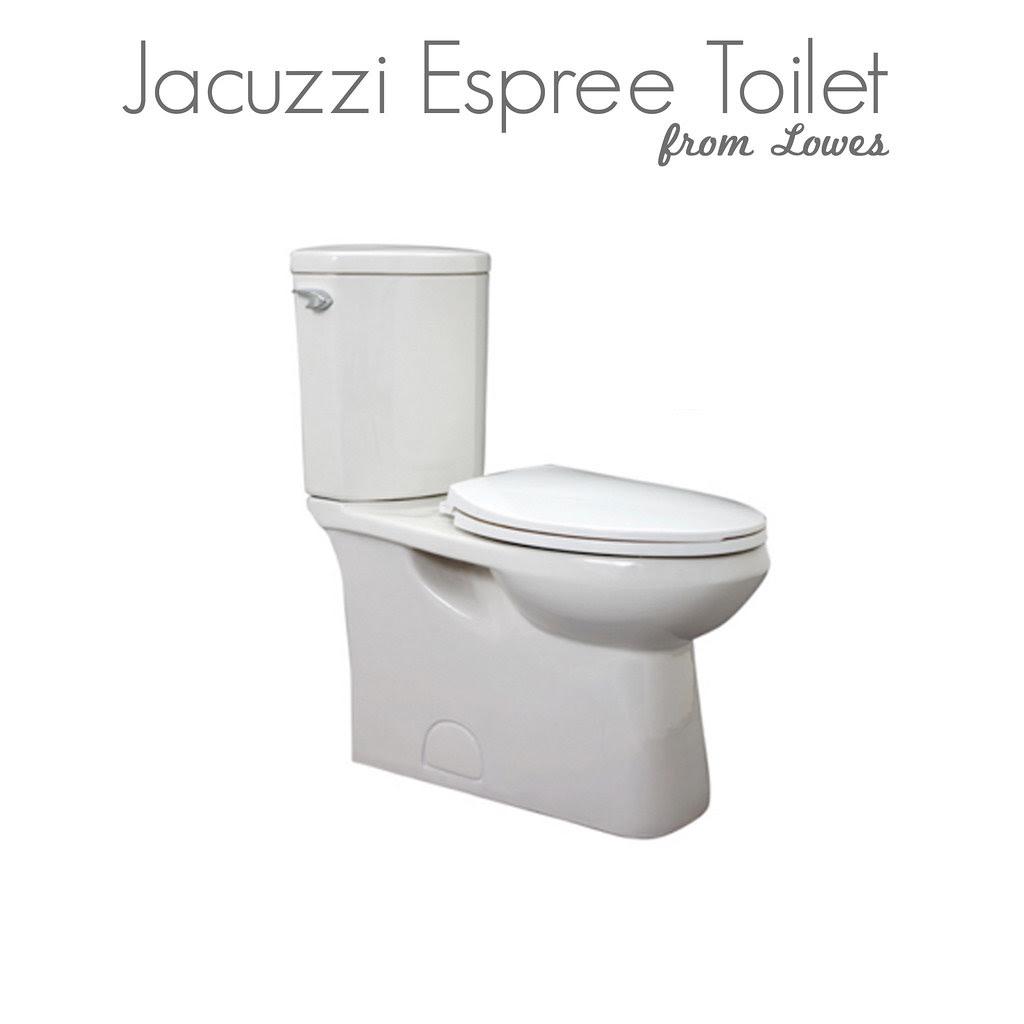 Toilet for Hall Bathroom - Jan 2010