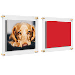 """Costco Clear Floating Acrylic Frames, 2-Pack, Gold, 16"""" x 20"""""""