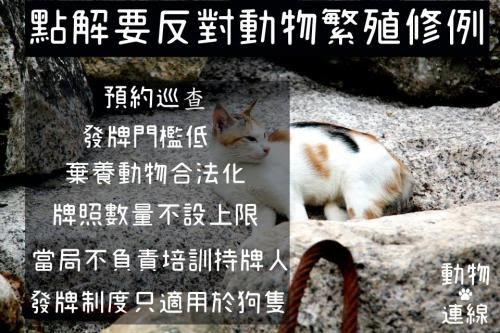 點解要反對動物繁殖修例?因為唔想香港變繁殖城