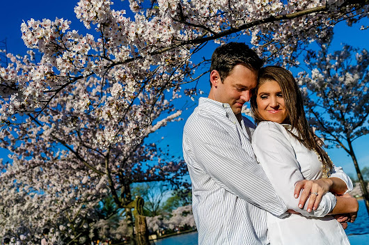 What You Need to Know About Cherry Blossom Photo Sessions | DC Wedding Photographer | Stephen Bobb Photography | DC, MD, VA