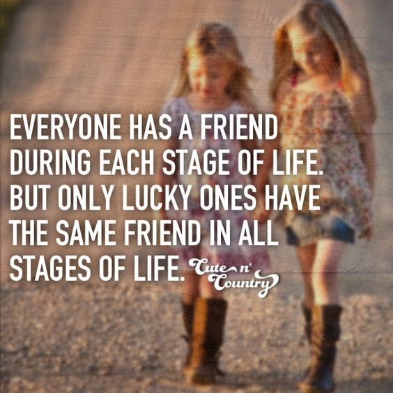 30 Best Friendship Quotes  Quotes and Humor