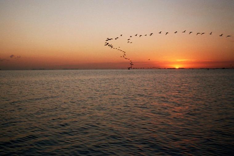 Turismo | Santa Fe:  Melincué ofrece ecoturismo, actividades náuticas, pesca y camping todo el añoCuesta: Se les enseña rompiéndoles el alma