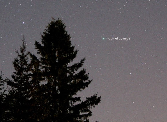 Comet Lovejoy was bright enough to nab in a 15-second time exposure with a 200mm telephoto lens last night. Details: f/2.8 at 13 seconds. Credit: Bob King