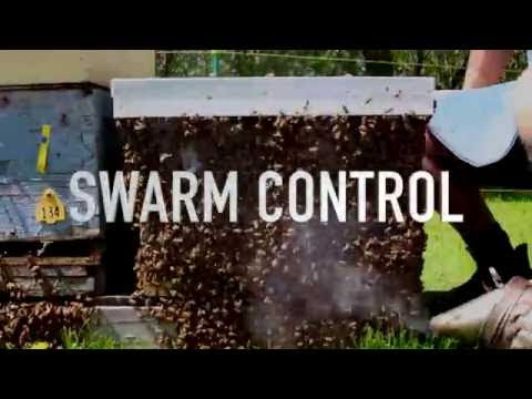 Excellent free How To videos for beekeepers from Guelph University