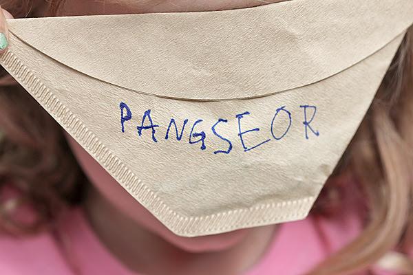 Panseer