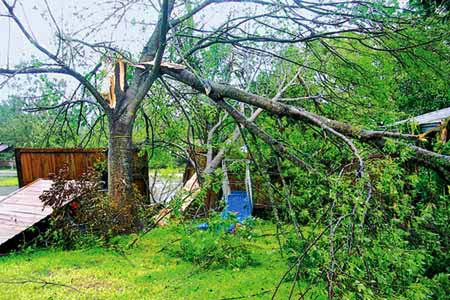 8 Safe Storm Cleanup Tips