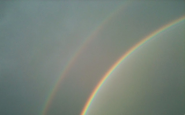 Side By Side Week 92 - Double pot of gold perhaps?