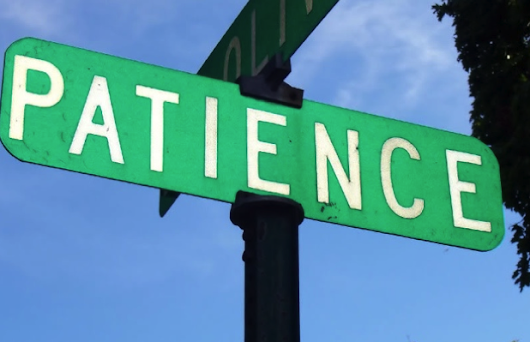 Keys to Business Success: The Importance of Patience