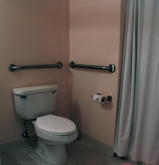 Tips on How to make a Bathroom Remodel Accessible for Those with Limited Mobility | The True Pros
