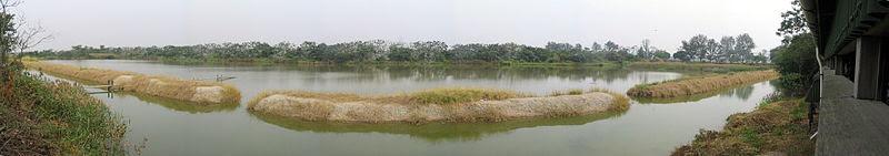 File:Mai Po Nature Reserve.jpg