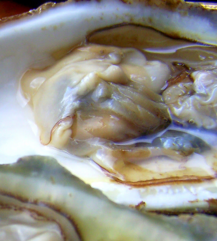 The world's mine oyster (Shakespeare)