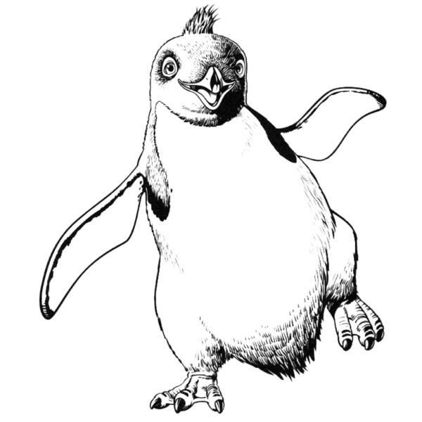 Disegno Di Pinguino Happy Feet Da Colorare Per Bambini