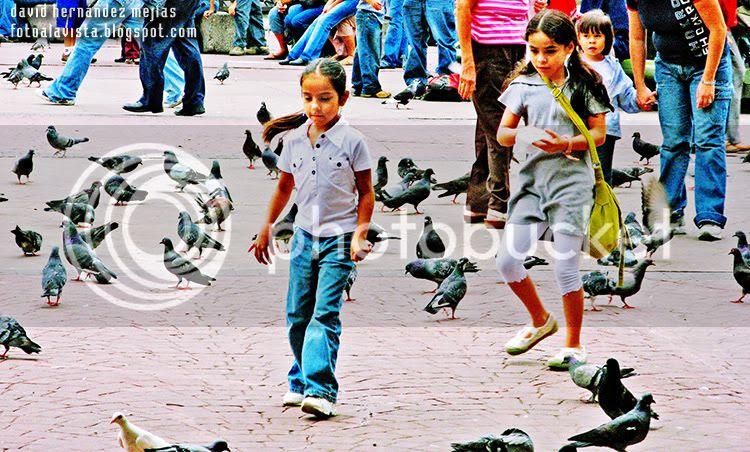 Niñas y palomas