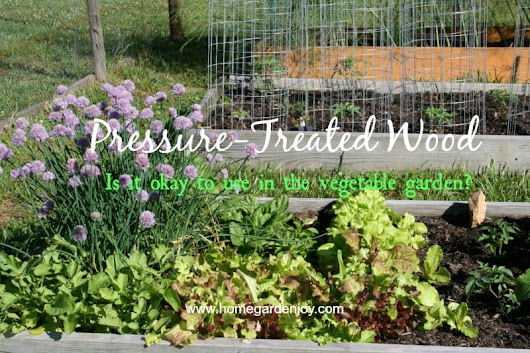 Can You Use Pressure Treated Wood in a Vegetable Garden?