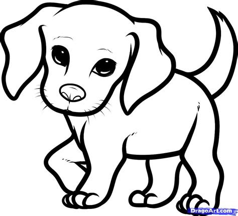 draw  cute dog   draw  beagle puppy