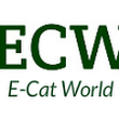 Interview with Andrea Rossi on Current and Future Developments of the E-Cat | E-Cat World