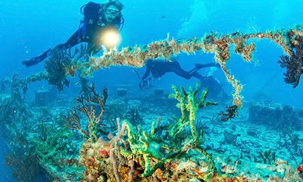 Recreational Scuba Dive Trip for Two or Four with Equipment from Silent World Dive Center (Up to 38% Off)