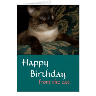 Siamese Cat Birthday Card Cards