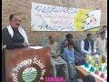 Subtain Haider Shah Gillani