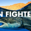 Fin Fighters Talk - How Bristol can help protect sharks and save our seas. | Ecojam