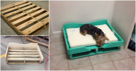 How To Make A DIY Pallet Dog Bed | How To Instructions