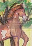 animal, horse, abstract, original, green, art card