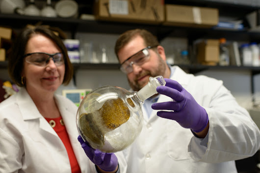 UF College of Pharmacy receives $3.5 million NIDA grant to bolster kratom research