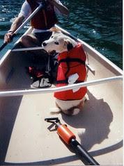 toby in a canoe