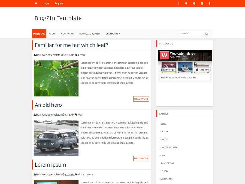 BlogZin