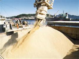Exportações crescem em 13 unidades da Federação este ano