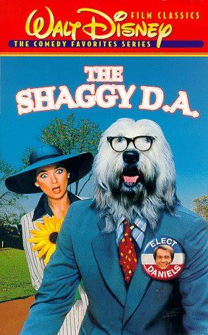 shaggyda