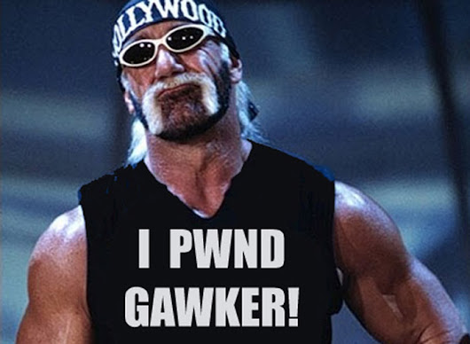 HULK HOGAN WINS $115M GAWKER TO FILE FOR BANKRUPTCY PROTECTION - Showbiz Spy
