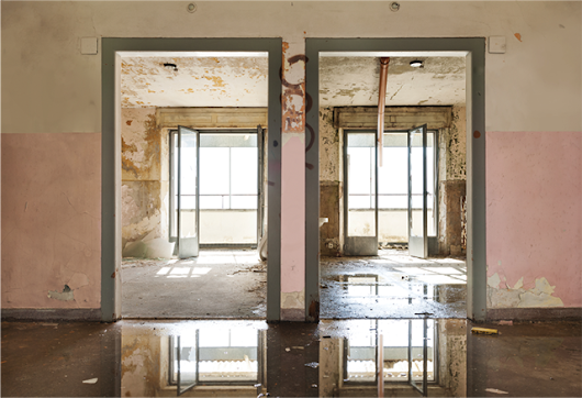 Mold: A Formidable Foe, But FEMA Can Help | Adjusting Today