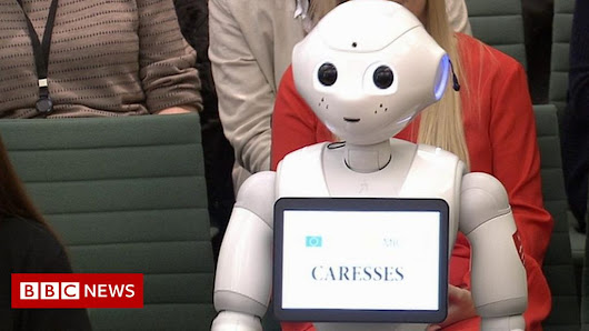 'My name is Pepper,' robot tells MPs