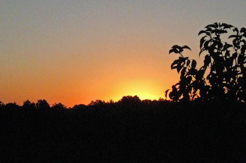 Eureka Sunrise