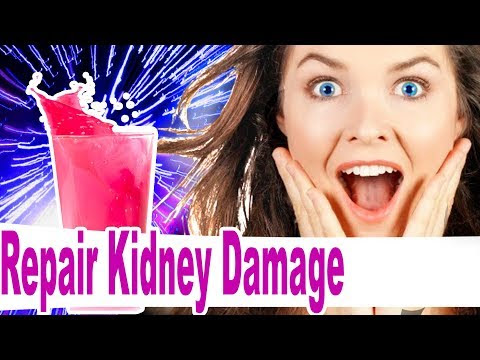 How to Repair Kidney Damage