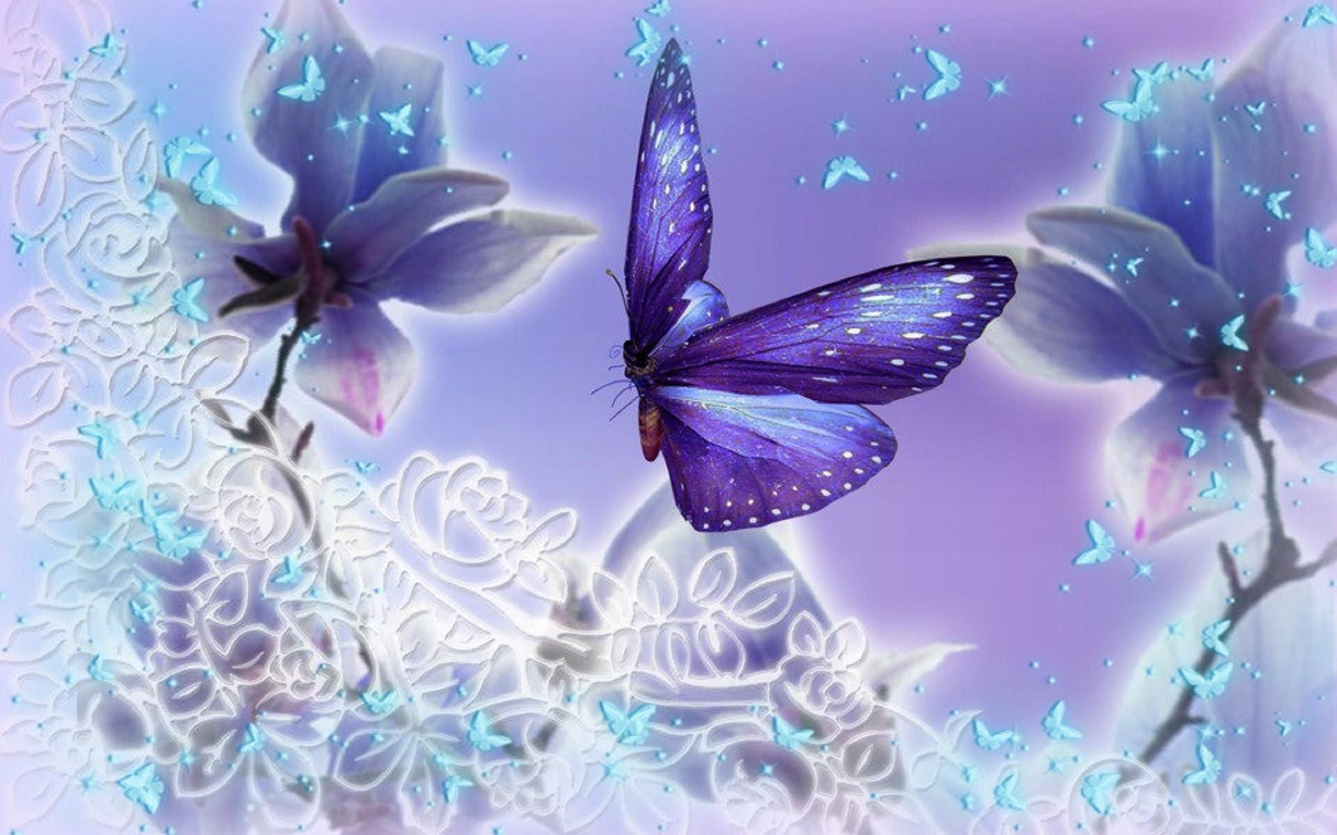 Butterfly Backgrounds free download   PixelsTalk.Net