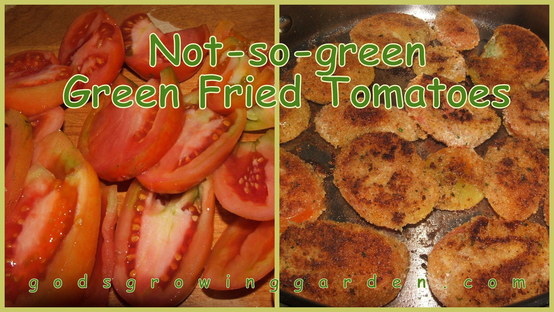 Green Fried Tomatoes by Angie Ouellette-Tower for godsgrowinggarden.com photo 2014-09-22_zps6c5dc04b.jpg