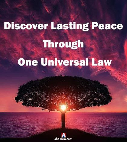 Discover Lasting Peace Through One Universal Law | Aha!NOW