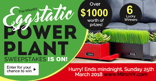The MinxNY Eggstatic POWER PLANT Sweepstakes is on!
