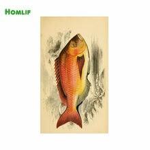 Kırmızı Balık Boyama Yorumlar Online Alışveriş Kırmızı Balık