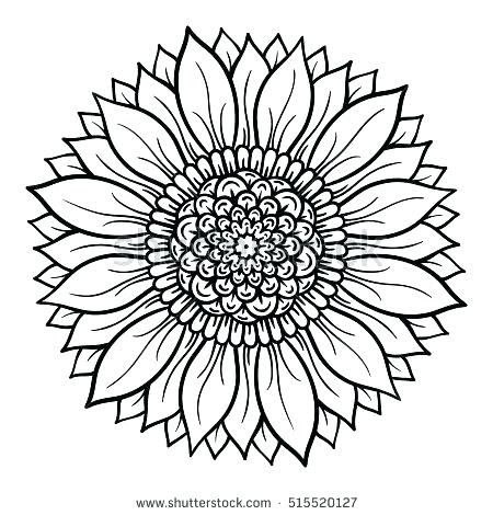 lotus mandala coloring page at getcolorings  free printable colorings pages to print and color