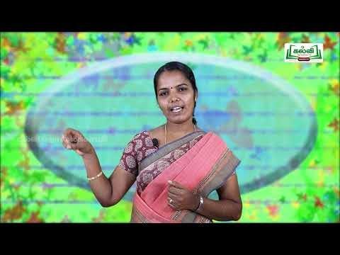 3rd English Bridge course Read Write - Simple sentence Day 9, 10 Kalvi TV