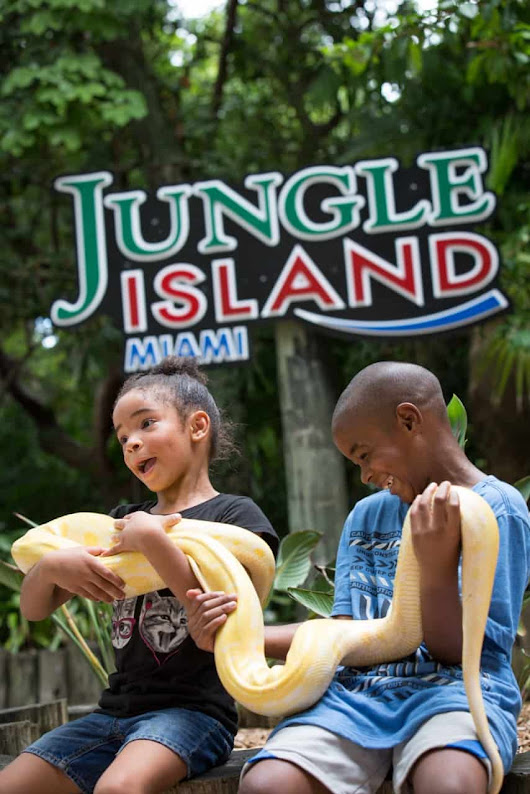 $10 discount on Jungle Island one-day pass in November - Miami on the Cheap