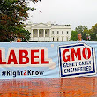Why We Should Accept GMO Labels: Scientific American