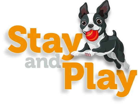 Stay and Play Doggy Day Care - Romford, Essex